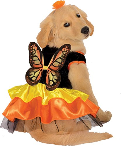 Monarch Butterfly Pet Kostüm Hund schwarz orange gelb Flügel (Kostüm Monarch)