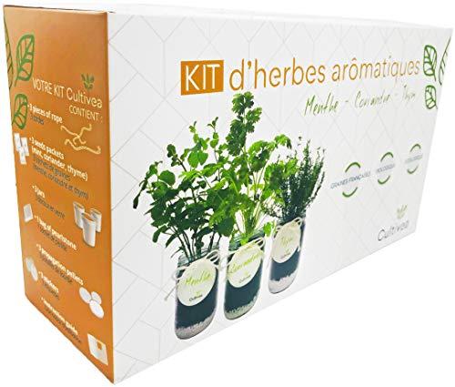  cultivea, kit pronto all'uso per coltivare erbe aromatiche, semi francesi, 100% ecologici e biologici, per giardinaggio e decorazione, idea regalo - menthe, coriandre et thym