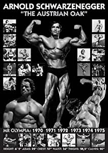 Arnold Schwarzenegger Mr Olympia 1970 to 1975 -- Austrian Oak Bodybuilding GREAT Groß Poster 36Zoll auf 24 Zoll Poster