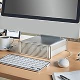 VonHaus Deluxe Erhöhung Stand für Desktop - Ergonomische Workstation mit Speicher