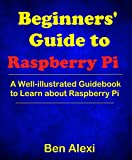 Beginners' Guide to Raspberry Pi: A Well-illustrated Guidebook to Learn about Raspberry Pi