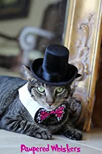 "The Aristocrat Top Hat and Wild Card Bowtie Collar for cats and dogs (11-15"")"