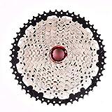 LBWNB Kassette 10 Fach Fahrradkartuschen 11-50T Für Fahrrad/Straßenrad/Mountainbike Black & Silver