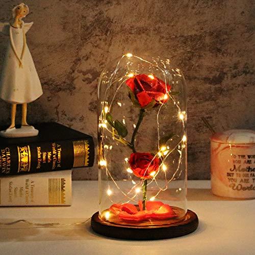 TEAMO La Belle et la Bête Rose,Rose LED Verre de Lumière Rose Dôme en Verre et Soie Rouge Decoration Rose Saint Valentin Decoration Cadeau Anniversa