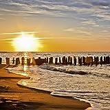Artland Qualitätsbilder   Glasbilder Deko Glas Bilder 30 x 30 cm Sonnenuntergang Nordsee Strand Dünen Sand D8PR Landschaften Meer