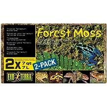 Exo Terra Sustrato Natural Forest Moss - Paquete de 2 Unidades ...
