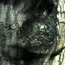 La Valse des Monstres