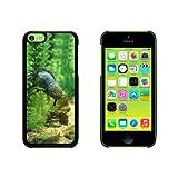 Best Iphone 5C Att Téléphones portables - orthank/portail–Mexicain SALAMANDAR–Animaux en Danger Coque de protection rigide Review