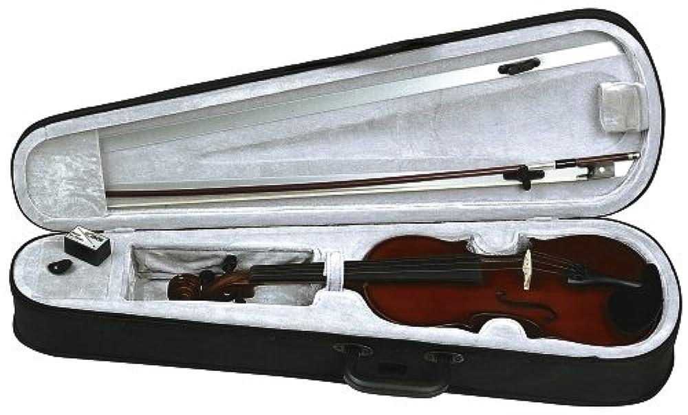 Violine Garnitur