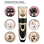 Dog Clippers, Professional Electric Cat Dog Grooming Clippers Kit with 4 Comb/Scissors/Nail File/Claw/Hair Clippers… 14