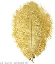 10 x Grande Plumas De Avestruz, 50.8 cm-76.2cmGold, 51-76cm Largo, 100% Natural Tintado - Nuevo