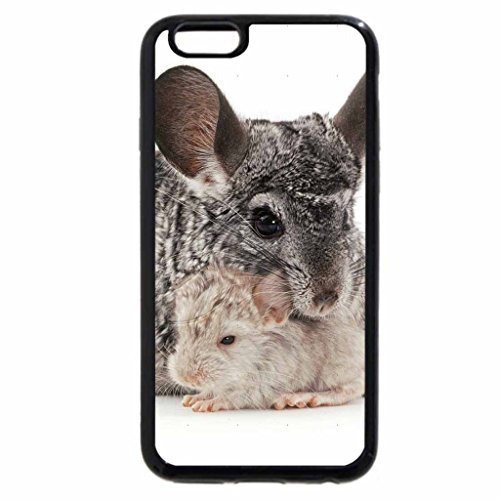 iPhone 6S / iPhone 6 Case (Black) chinchilla with cubs (Chinchilla Black)