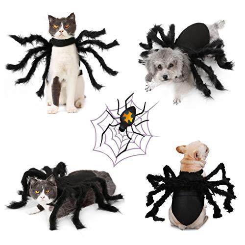 - Katze Kostüm Für Halloween