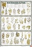 Schreiber Naturtafeln, Küchenkräuter von A bis Z