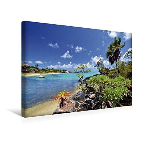Preisvergleich Produktbild Premium Textil-Leinwand 45 cm x 30 cm quer, Mauritius | Wandbild, Bild auf Keilrahmen, Fertigbild auf echter Leinwand, Leinwanddruck: Am Cap Malheureux bei Grand Gaube (CALVENDO Orte)