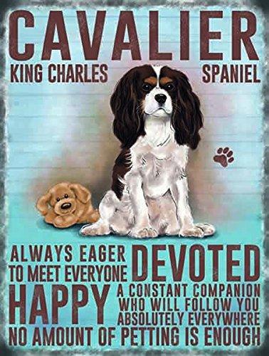 Cavalier King Charles Spaniel Metallschild (og 2015)