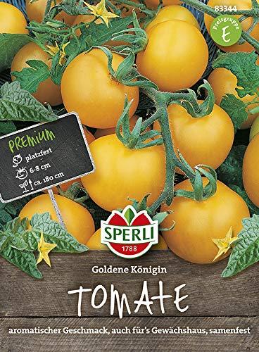 Tomatensamen - Tomate Goldene Königin von Sperli-Samen