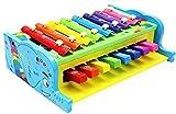 Multicolor Xylophone Glockenspiel Knock ...