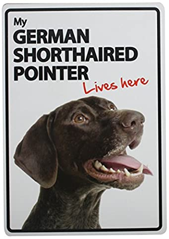 German Shorthaired Pointer Lives Here Plastic Sign