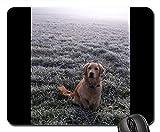 Mauspads - Hundegoldenes Retriver Hundeporträt-Schönheit golden