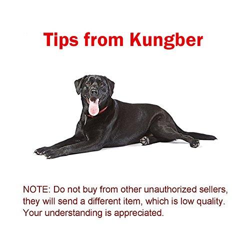 Kungber Fidget dedo Spinner suave silencioso latón Focus personalizable de 6 caras desmontable Premium rodamientos