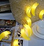 3M 20LED Bananen Lichterkette Batteriebetriebene Weihnachtliche mit Lichterkette Warmweiß - Transparente Stern für Party Deko, Garten Deko, Weihnachten, Hotel, Fest Deko,Hochzeit, Geburtstag …