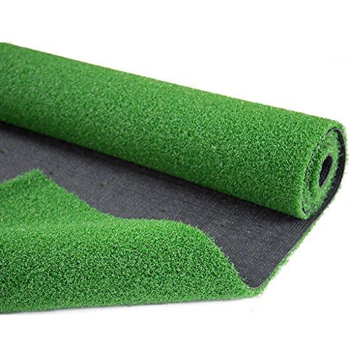 WENZHE Golf Mat Tappetino Da Golf Erba Sintetica Alta Qualità Suola Di Gomma 2 Metri Di Larghezza, Spessore 15mm ( dimensioni : 2*3m )