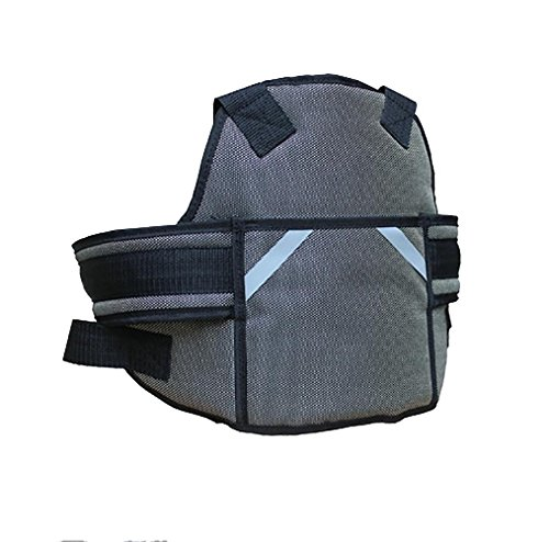 RUIRUI Kinder Motorrad Gurtzeug Stil Sicherheitsgurte Baby Fallschutz , deluxe edition grey