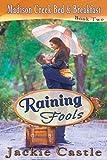 Raining Fools (Madison Creek Bed & Breakfast Book 2)