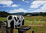 Witzige Briefkästen – Schreib mal wieder (Wandkalender 2016 DIN A3 quer): Die witzigsten Briefkästen aus Neuseeland mit coolen Sprüchen (Monatskalender, 14 Seiten) (CALVENDO Natur)