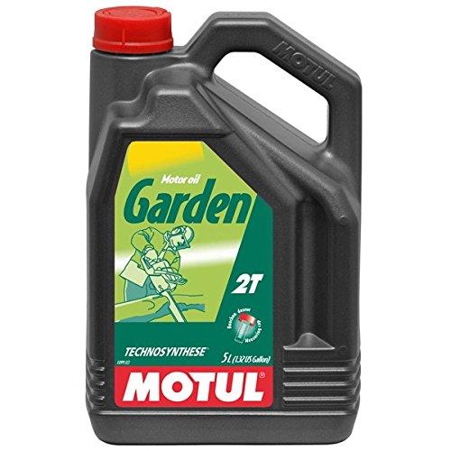Motul 100047Moteur Garden 2T, 5l pas cher