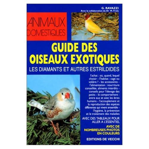 Guide des oiseaux exotiques : Les Diamants et autres estrildides
