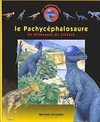 Le Pachycéphalosaure, numéro 4