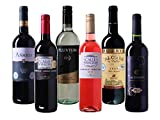 Produkt-Bild: Wein Probierpaket selektierte Weine aus Spanien trocken (6 x 0.75 l)