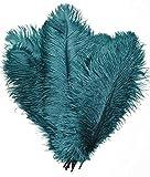 kolight 30pcs 10'~ 12' (25-30cm) plumas de...