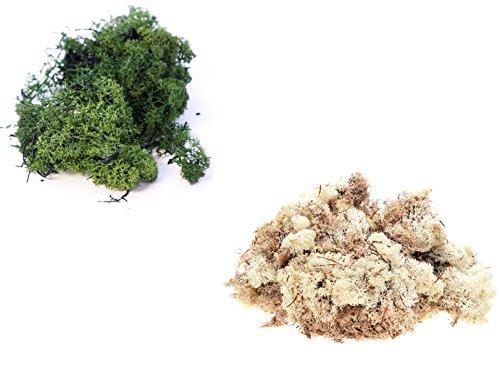 Preisvergleich Produktbild Inerra Finnland Moos - Packung zu 2 Gemischte Farben 500 G Beutel - Rentier Moos Basteln Pflanzen Töpfe Blumen Display Modellier - 500 g dunkel grün & 500 g natürlich