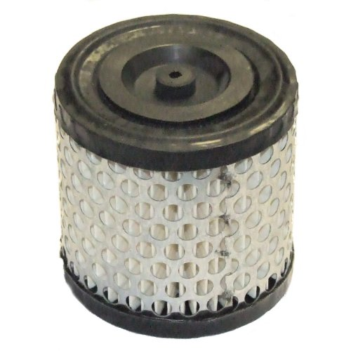filtro-aria-per-briggs-stratton-2hp-5hp-396424-396434s