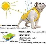 SymbolLife Kühlweste für Hunde Vest Selbstkühlend Atmungsaktiv Blau/Gelb (XL, Gelb) - 3