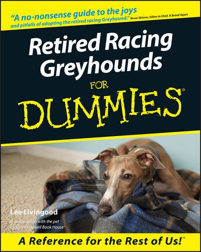 retired-racing-greyhounds-for-dummies