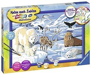Ravensburger Tiere Der Arktis Kit de Pintura por números - Libros y páginas para Colorear (Kit de Pintura por números, 1 páginas, Niño, Niño/niña, 11 año(s), 31 cm)
