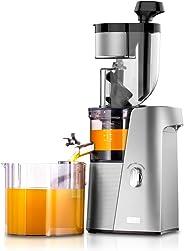 SKG A10 Cold Press Slow Masticating Juicer - Silver