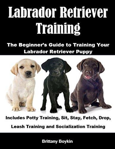 Descargar PDF Labrador Retriever Training: The Beginner's