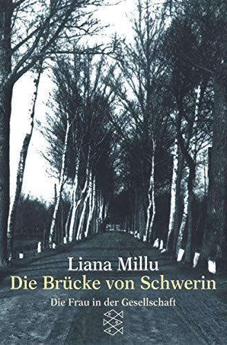 Die Brücke von Schwerin (Die Frau in der Gesellschaft)