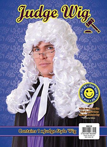 % Bristol Novelty BW339 – Parrucca economica da giudice, taglia unica, colore: Bianco prezzo