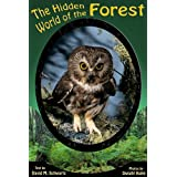 The Hidden World of the Forest (English Edition)