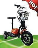 500W ElektroScooter Zappy! (Orange) Zappy ElektroScooter Senioren ElektroMobil Mobility Vehicle Elektro Dreirad bis 25km/h