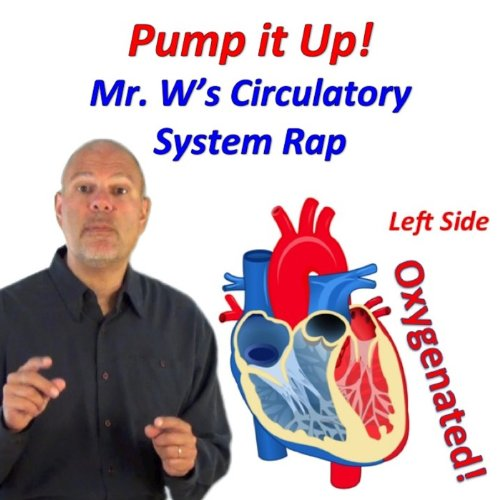 Pump It Up! (Mr. W's Circulatory System Rap) -