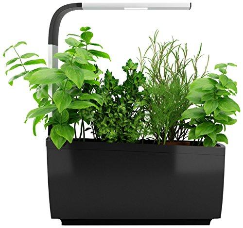 Tregren T6 Potager d'intérieur Connecté 6 plantes, Kit prêt à pousser et Jardinière Autonome pour herbes aromatiques, petits légumes, fleurs - Cultivez avec votre application smartphone - Noir