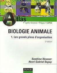 Biologie animale : Tome 1, Les grands plans d'organisation
