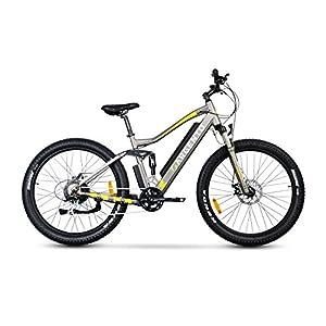 51YJYi2DqQL. SS300 Argento Performance PRO, Bici Elettrica Unisex Adulto